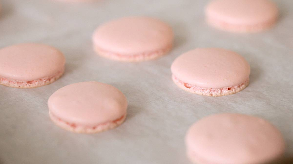 French macaron shells on a baking sheet with smooth tops