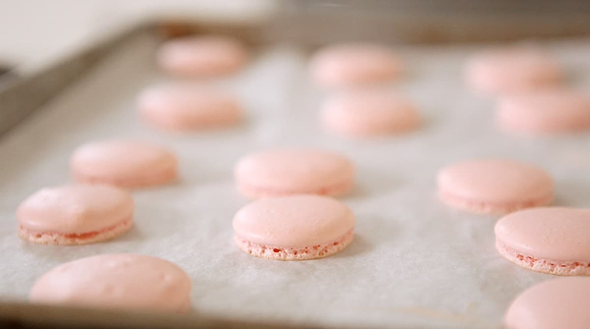 French macaron cookies with smooth tops on a baking sheet with parchment paper