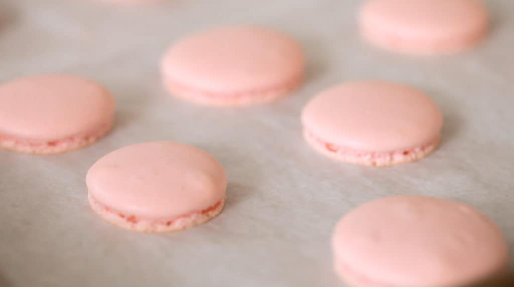 Smooth tops of a French Macaron cookie coming out of the oven