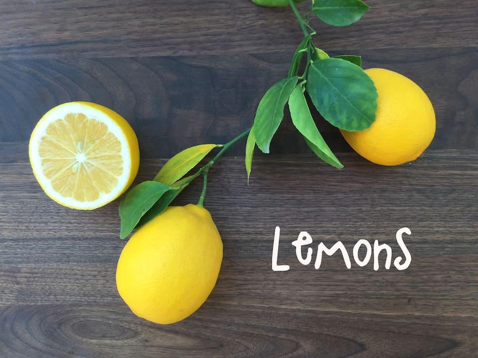 LemonStill copy