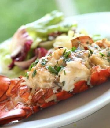 Lobster Thermidor on a white plate with a side salad