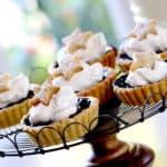 Blueberry Tart Recipe. Wonderful Summer Dessert Idea for a great Mini Tart