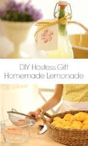 homemade lemon served in a glass container and homemade lemonade ingredients and tools on a wood counter