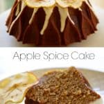 Apple Spice Cake REcipe with dehydrated apple garnish