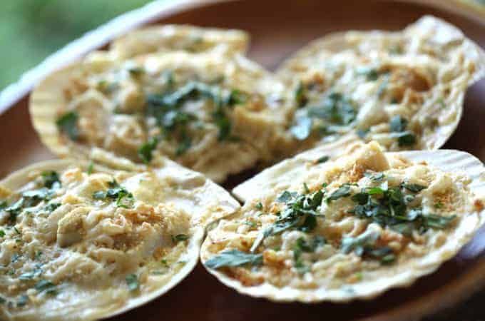 Coquilles St. Jacques (Scallop Gratin)