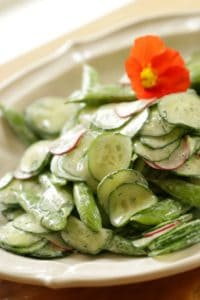Creamy Cucumber Salad with Dill on Plate