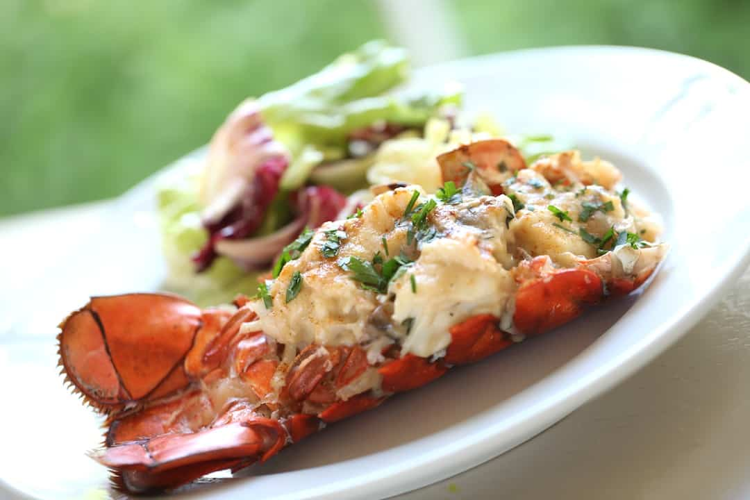 a Lobster Thermidor on a white plate with a side salad