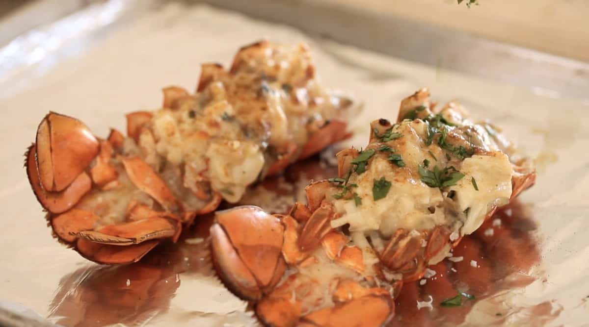 Freshly Baked Lobster Thermidor on a sheet pan garnished with fresh parsley