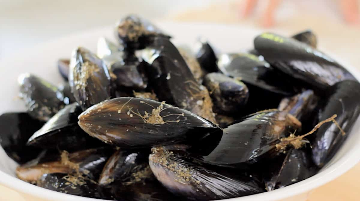 a bowl of fresh mussels with their beards, the fibrous