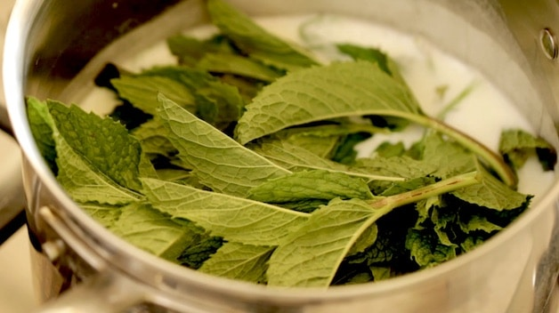 Fresh mint floating in a saucepot of cream and milk
