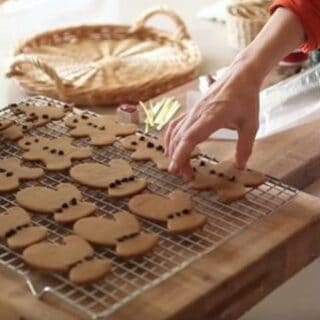 Placing Easy Gingerbread Cookie Recipe into plastic bags