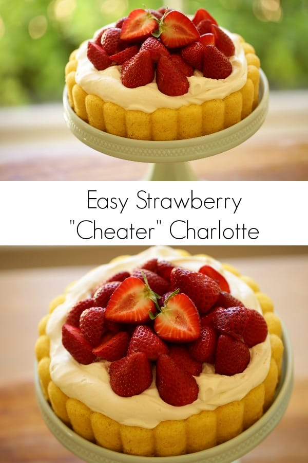 views of a strwaberry shortcake cheater charlotte on a blue cakestand