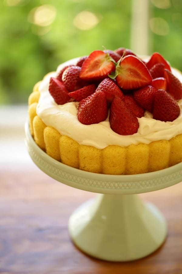 Vertical image of a strawberry shortcake cheater charlotte on a blue cake stand with garden view behind it