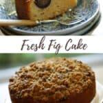 Fig Cake Pin
