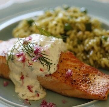 Seared Salmon on Blue Plate with Cucumber Dill Sauce