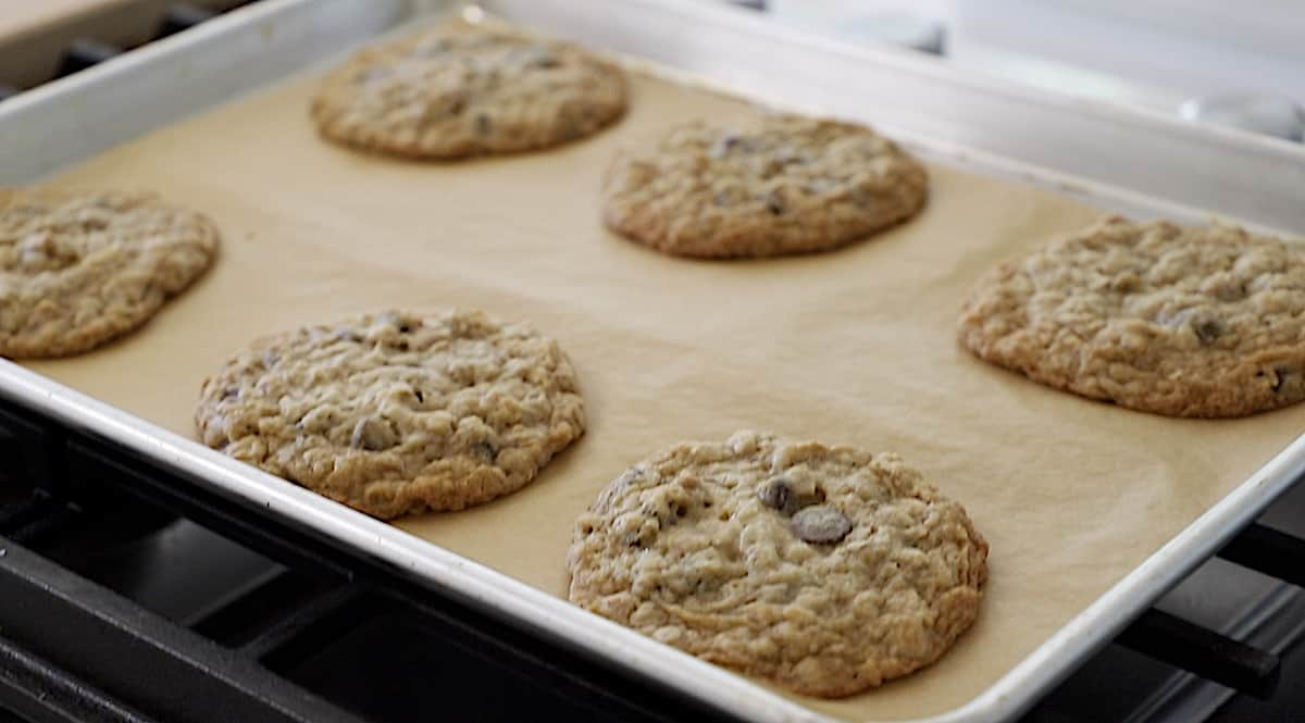 Cookies on sheet pan just baked cooling on cooktop