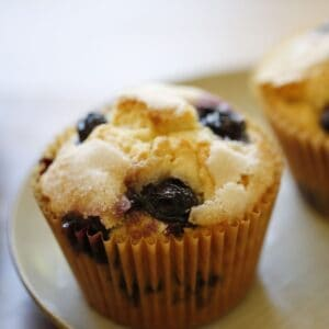 Blueberry Muffin on a blue plate
